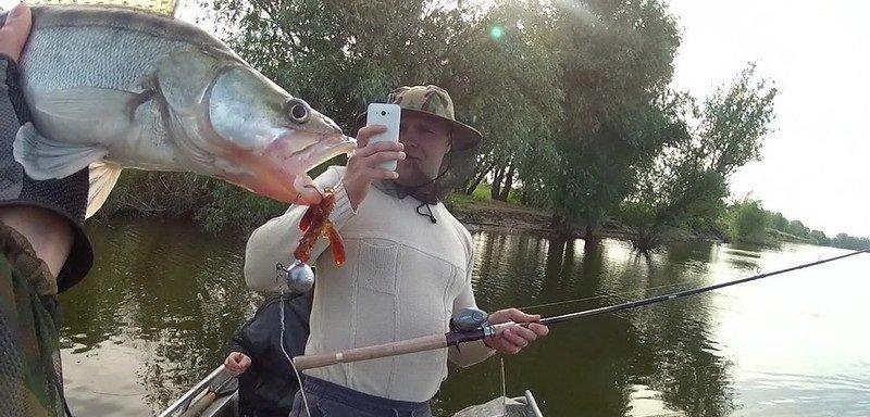 Рыбалка – на что ловить рыбу, когда клюет