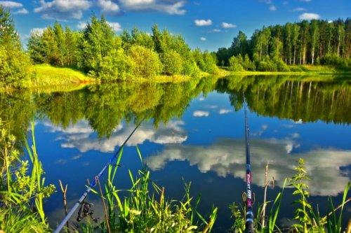 Клёвая погода для рыбалки