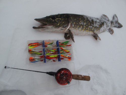 Рыбалка на балансир