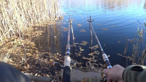 Рыбалка в апреле на фидер