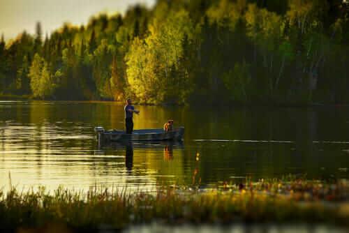 Как ловить карася в прудах на поплавочную удочку в мае