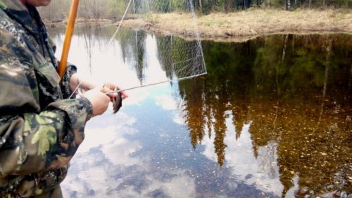 Рыбалка на косынку летом