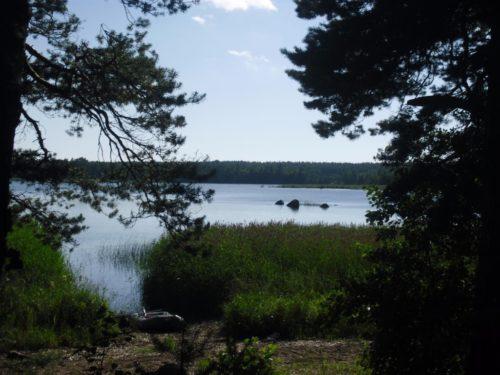 Отдых и рыбалка на Финском заливе
