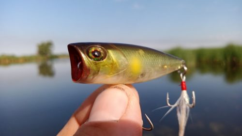 Приманка для речной рыбы своими руками