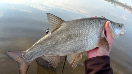 Отдых на Урале рыбалка