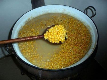 Кукуруза как приманка для рыбы
