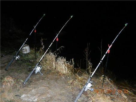 Ловля налима осенью - лучшие наживки и прикормки, только топовые способы рыболовства