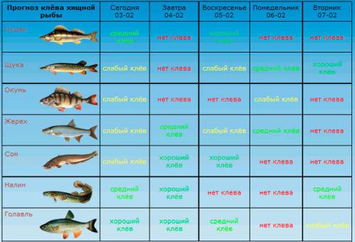 Таблица прогноза