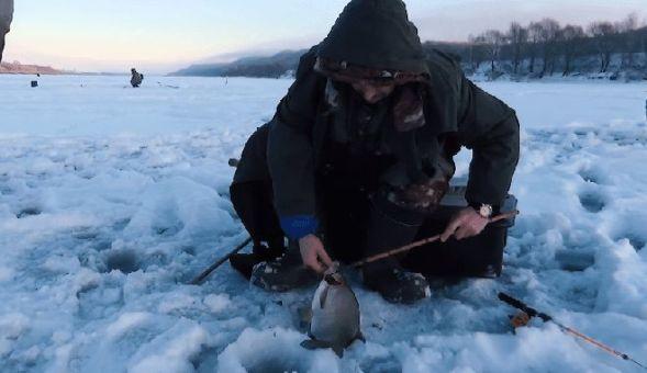 Lovlya-lescha-zimoy