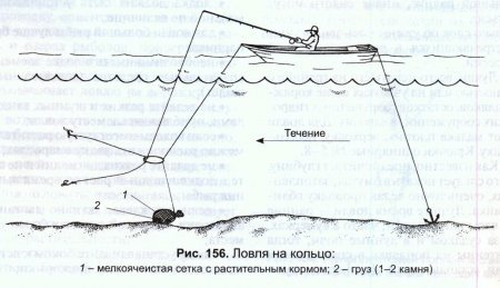 Ловля леща на кольцо - оснастка и техника ловли